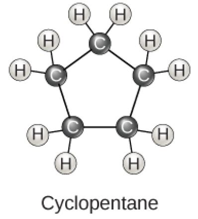 Cyclopentane is a ring consisting of five carbons, each with two hydrogens attached.