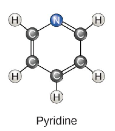 Pyridine is a six-carbon ring with alternating double bonds and a nitrogen substituted for one of the carbons. No hydrogens are attached to the nitrogen.