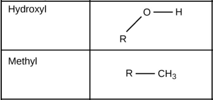 Hydroxyl groups, which consist of upper case O upper case H attached to a carbon chain, are polar. Methyl groups, which consist of three hydrogens attached to a carbon chain, are nonpolar.