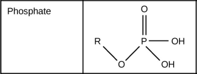 Phosphate groups consist of a phosphorous with one double bonded oxygen and two upper O upper H groups. Another oxygen forms a link from the phosphorous to a carbon chain. Both upper O upper H groups in phosphorous can lose an H positive ion, and phosphate groups are considered acidic.